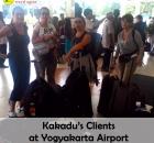 Kakadu's clients.jpg