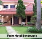 Palm Hotel.jpg