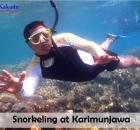 Snorkeling at Karimun Jawa.jpg