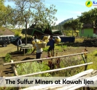 Sulfur Miners.jpg