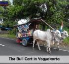 The Bull Cart.jpg
